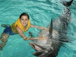 Сохранить документ на диск Дельфинарий Набережные Челны
